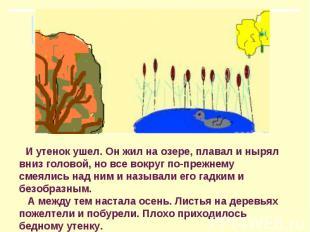 И утенок ушел. Он жил на озере, плавал и нырял вниз головой, но все вокруг по-пр