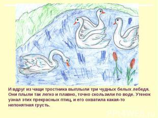 И вдруг из чащи тростника выплыли три чудных белых лебедя. Они плыли так легко и