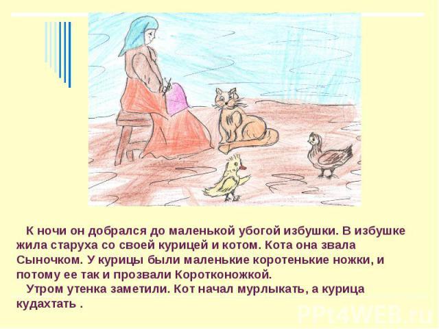 К ночи он добрался до маленькой убогой избушки. В избушке жила старуха со своей курицей и котом. Кота она звала Сыночком. У курицы были маленькие коротенькие ножки, и потому ее так и прозвали Коротконожкой. Утром утенка заметили. Кот начал мурлыкать…