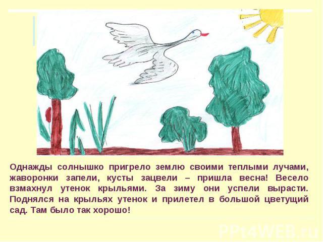 Однажды солнышко пригрело землю своими теплыми лучами, жаворонки запели, кусты зацвели – пришла весна! Весело взмахнул утенок крыльями. За зиму они успели вырасти. Поднялся на крыльях утенок и прилетел в большой цветущий сад. Там было так хорошо!