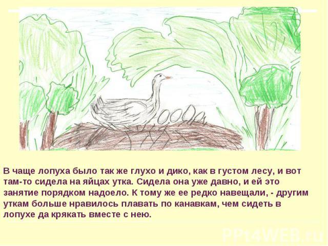 В чаще лопуха было так же глухо и дико, как в густом лесу, и вот там-то сидела на яйцах утка. Сидела она уже давно, и ей это занятие порядком надоело. К тому же ее редко навещали, - другим уткам больше нравилось плавать по канавкам, чем сидеть в лоп…