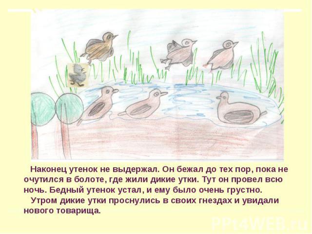 Наконец утенок не выдержал. Он бежал до тех пор, пока не очутился в болоте, где жили дикие утки. Тут он провел всю ночь. Бедный утенок устал, и ему было очень грустно. Утром дикие утки проснулись в своих гнездах и увидали нового товарища.