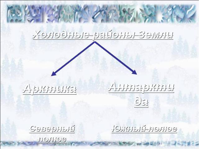 Холодные районы Земли Арктика Антарктида Северный полюс Южный полюс