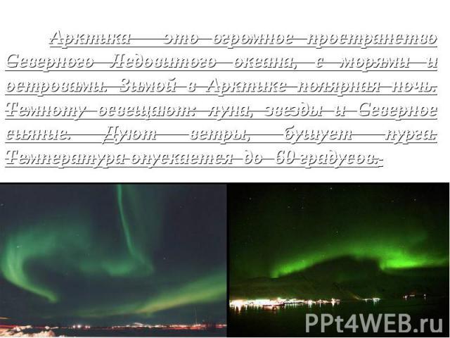 Арктика - это огромное пространство Северного Ледовитого океана, с морями и островами. Зимой в Арктике полярная ночь. Темноту освещают: луна, звезды и Северное сияние. Дуют ветры, бушует пурга. Температура опускается до -60 градусов.