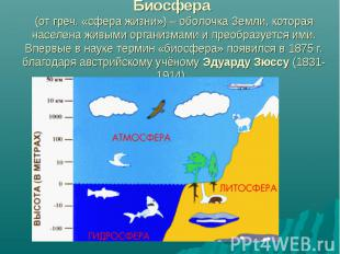 Биосфера (от греч. «сфера жизни») – оболочка Земли, которая населена живыми орга