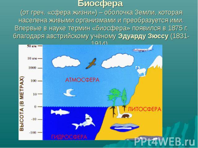 Биосфера (от греч. «сфера жизни») – оболочка Земли, которая населена живыми организмами и преобразуется ими. Впервые в науке термин «биосфера» появился в 1875 г. благодаря австрийскому учёному Эдуарду Зюссу (1831-1914).