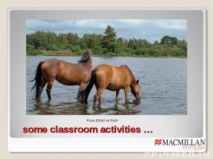 some classroom activities …