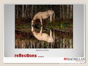 reflections ….
