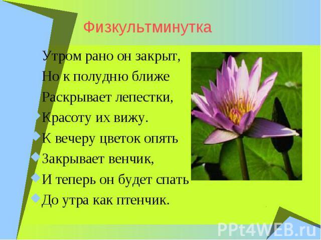 ФизкультминуткаУтром рано он закрыт, Но к полудню ближе Раскрывает лепестки, Красоту их вижу. К вечеру цветок опять Закрывает венчик, И теперь он будет спать До утра как птенчик.