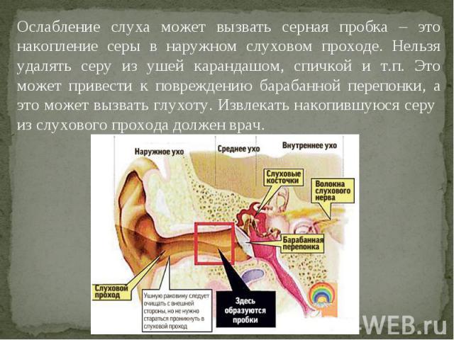 Ослабление слуха может вызвать серная пробка – это накопление серы в наружном слуховом проходе. Нельзя удалять серу из ушей карандашом, спичкой и т.п. Это может привести к повреждению барабанной перепонки, а это может вызвать глухоту. Извлекать нако…