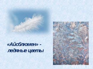 «Айсблюмен» - ледяные цветы