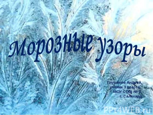 Морозные узоры Глушаков Андрей, ученик 3 класса, МОУ СОШ № 3, г. Салехард