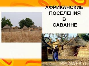 АФРИКАНСКИЕ ПОСЕЛЕНИЯ В САВАННЕ