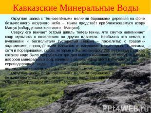 Кавказские Минеральные Воды Округлая шапка с тёмнозелёными мелкими барашками дер