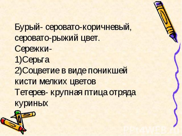 Бурый- серовато-коричневый, серовато-рыжий цвет. Сережки- 1)Серьга 2)Соцветие в виде поникшей кисти мелких цветов Тетерев- крупная птица отряда куриных