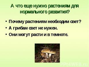 А что еще нужно растениям для нормального развития? Почему растениям необходим с