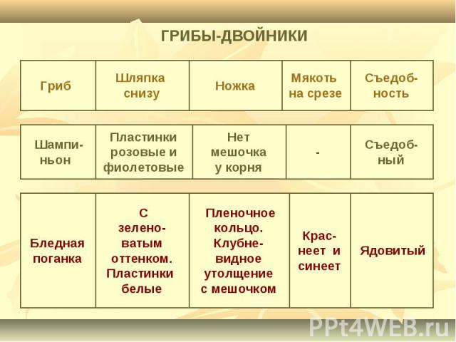ГРИБЫ-ДВОЙНИКИ
