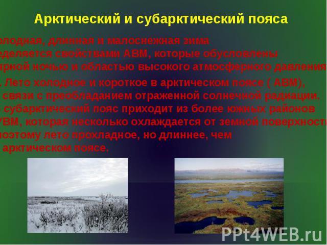 Арктический и субарктический пояса Холодная, длинная и малоснежная зима определяется свойствами АВМ, которые обусловлены полярной ночью и областью высокого атмосферного давления. 2. Лето холодное и короткое в арктическом поясе ( АВМ), в связи с прео…