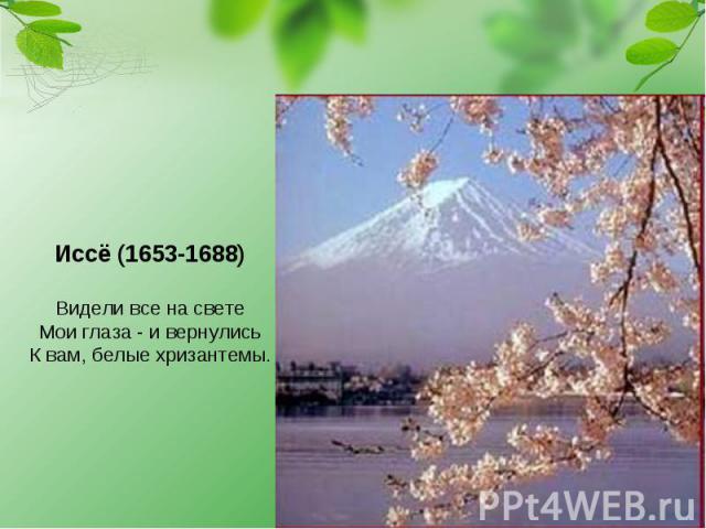 Иссё (1653-1688) Видели все на свете Мои глаза - и вернулись К вам, белые хризантемы.