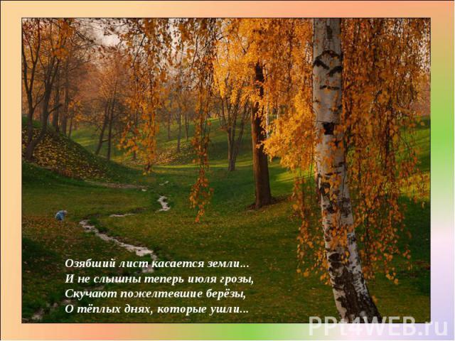 Озябший лист касается земли... И не слышны теперь июля грозы, Скучают пожелтевшие берёзы, О тёплых днях, которые ушли...