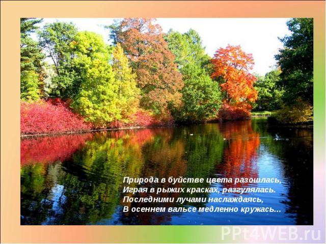 Природа в буйстве цвета разошлась, Играя в рыжих красках, разгулялась. Последними лучами наслаждаясь, В осеннем вальсе медленно кружась...