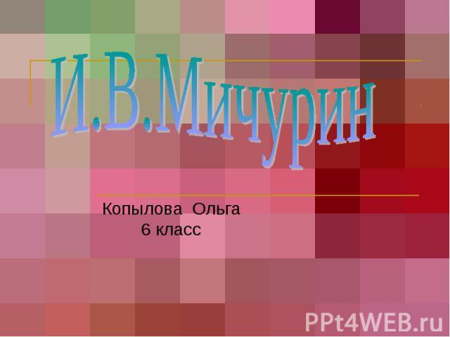 И.В.Мичурин Копылова Ольга 6 класс