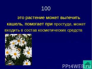 это растение может вылечить кашель, помогает при простуде, может входить в соста
