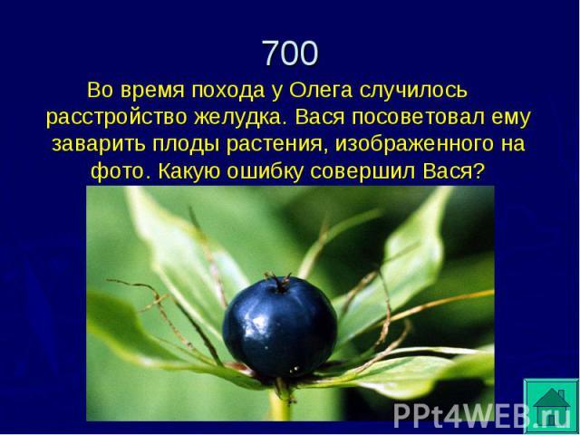 Во время похода у Олега случилось расстройство желудка. Вася посоветовал ему заварить плоды растения, изображенного на фото. Какую ошибку совершил Вася?