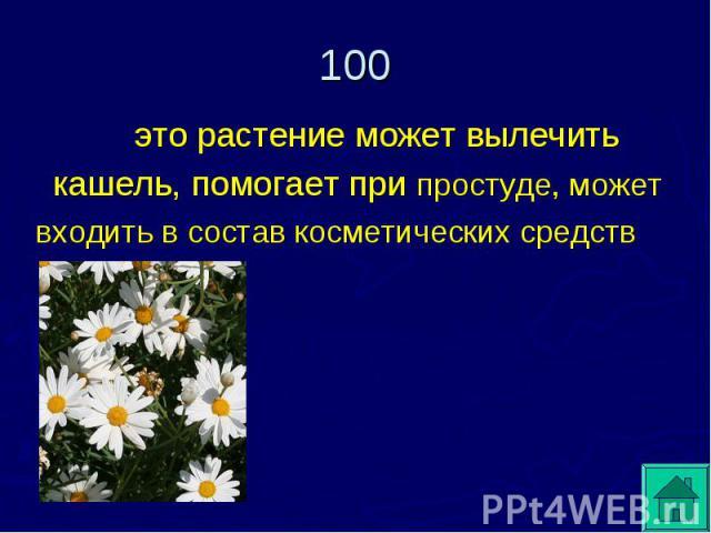 это растение может вылечить кашель, помогает при простуде, может входить в состав косметических средств