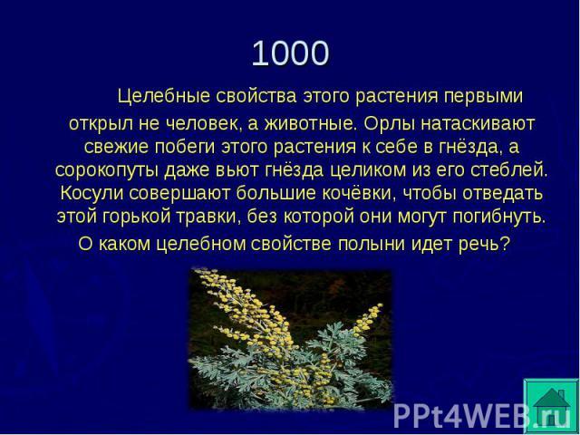 Целебные свойства этого растения первыми открыл не человек, а животные. Орлы натаскивают свежие побеги этого растения к себе в гнёзда, а сорокопуты даже вьют гнёзда целиком из его стеблей. Косули совершают большие кочёвки, чтобы отведать этой горько…