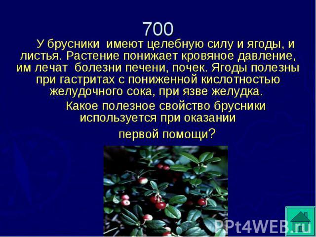 У брусники имеют целебную силу и ягоды, и листья. Растение понижает кровяное давление, им лечат болезни печени, почек. Ягоды полезны при гастритах с пониженной кислотностью желудочного сока, при язве желудка. Какое полезное свойство брусники использ…