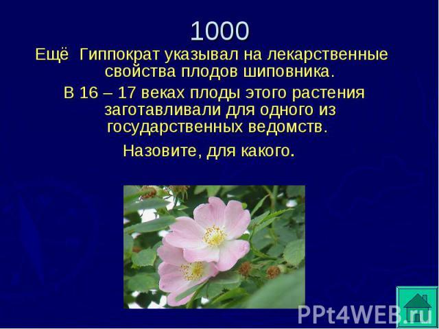 Ещё Гиппократ указывал на лекарственные свойства плодов шиповника. В 16 – 17 веках плоды этого растения заготавливали для одного из государственных ведомств. Назовите, для какого.
