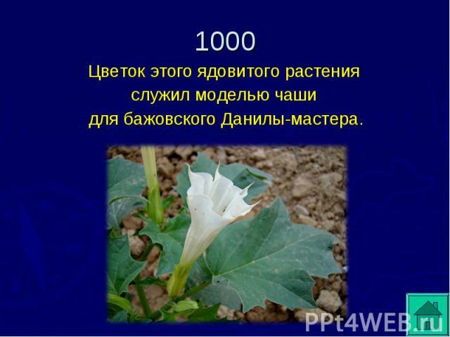 Цветок этого ядовитого растения служил моделью чаши для бажовского Данилы-мастера.