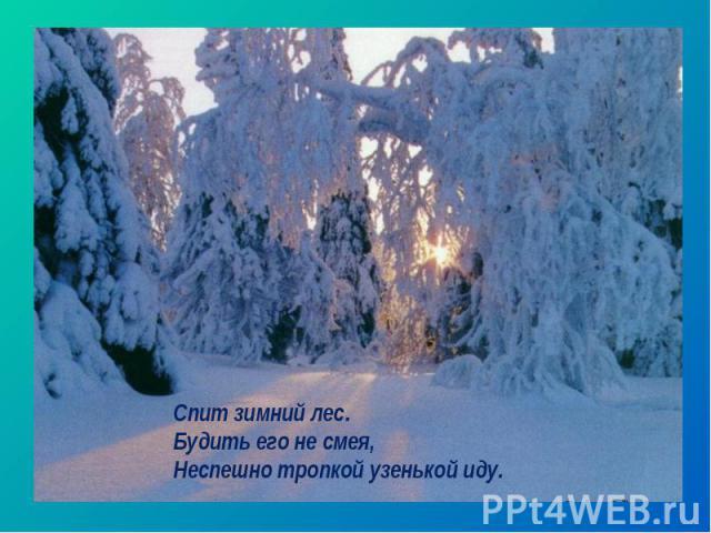 Спит зимний лес. Будить его не смея, Неспешно тропкой узенькой иду.