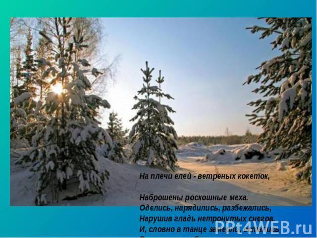 На плечи елей - ветреных кокеток, Наброшены роскошные меха. Оделись, нарядились, разбежались, Нарушив гладь нетронутых снегов. И, словно в танце замерли, остались В плену волшебных, славных, зимних снов.