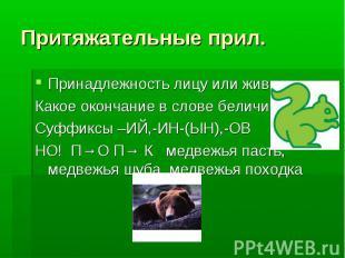 Притяжательные прил. Принадлежность лицу или животному Какое окончание в слове б