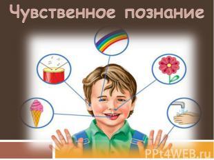 Чувственное познание