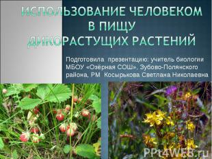 Использование человеком в пищу дикорастущих растений Подготовила презентацию: уч