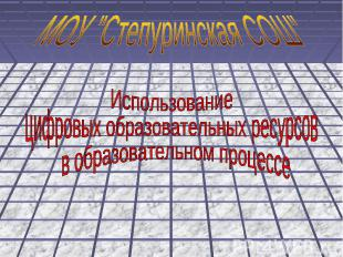 """МОУ """"Степуринская СОШ"""" Использование цифровых образовательных ресурсов в образов"""