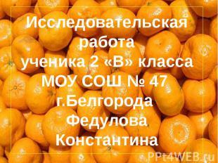 Исследовательская работа ученика 2 «В» класса МОУ СОШ № 47 г.Белгорода Федулова