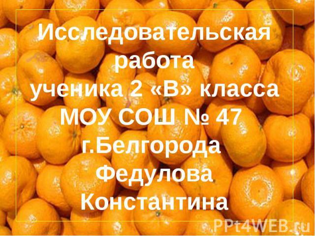 Исследовательская работа ученика 2 «В» класса МОУ СОШ № 47 г.Белгорода Федулова Константина