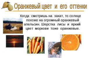 Оранжевый цвет и его оттенки Когда смотришь на закат, то солнце похоже на огромн