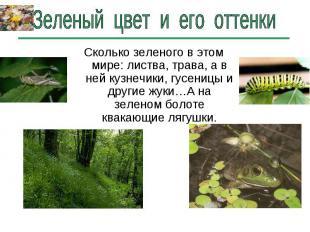 Зеленый цвет и его оттенки Сколько зеленого в этом мире: листва, трава, а в ней