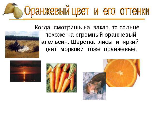 Оранжевый цвет и его оттенки Когда смотришь на закат, то солнце похоже на огромный оранжевый апельсин. Шерстка лисы и яркий цвет моркови тоже оранжевые.