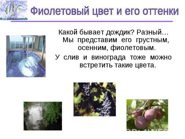 Фиолетовый цвет и его оттенки Какой бывает дождик? Разный…Мы представим его грустным, осенним, фиолетовым. У слив и винограда тоже можно встретить такие цвета.