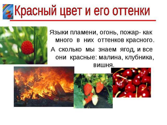 Красный цвет и его оттенки Языки пламени, огонь, пожар- как много в них оттенков красного. А сколько мы знаем ягод, и все они красные: малина, клубника, вишня.