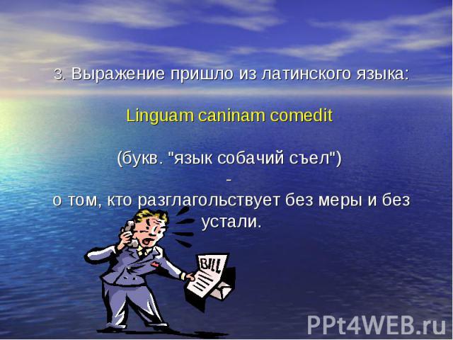3. Выражение пришло из латинского языка: Linguam caninam comedit (букв.