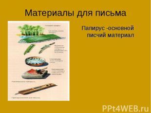 Материалы для письмаПапирус -основной писчий материал