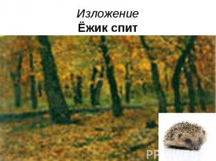 Изложение Ёжик спит