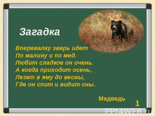 Загадка Вперевалку зверь идет По малину и по мед. Любит сладкое он очень. А когд